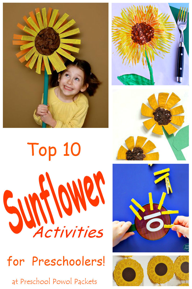 Top 10 Sunflower Activities For Preschool