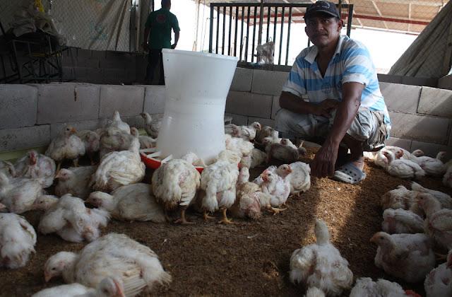 asociacion-de-bloqueros-diversifica-produccion-agricola