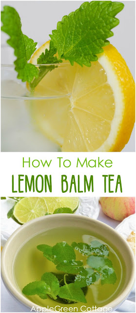 Learn how to make lemon balm tea. Quick and easy!