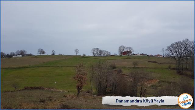 Danamandıra-Koyu-Yayla