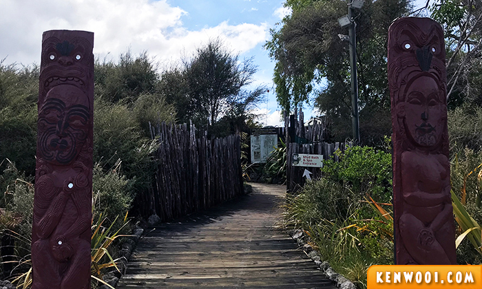 rotorua hells gate mud spa experience