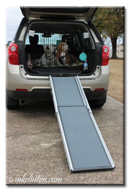 Solvit Telescoping Pet Ramp set up on SUV with dogs in kennel.
