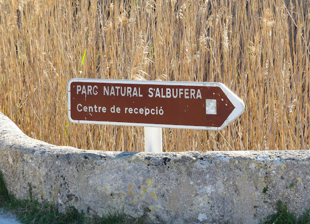 S'Albufera Natural Park, Mallorca