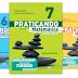 Praticando Matemática - 6º ano, 7º ano, 8º ano e 9º ano - Manual do Professor