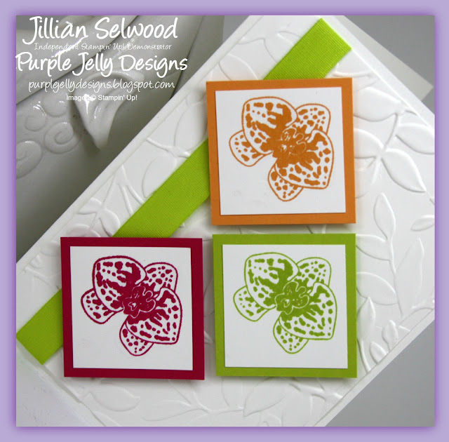 "Lemon Lime Twist 1/2"" Finely Woven Ribbon, Climbing Orchids Stamp set"
