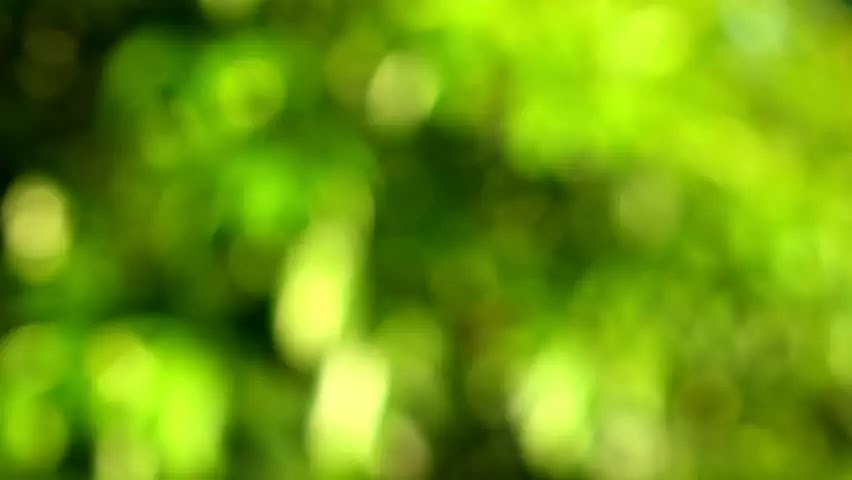 Hd Blur Background For Picsart The Hd Wallpaper