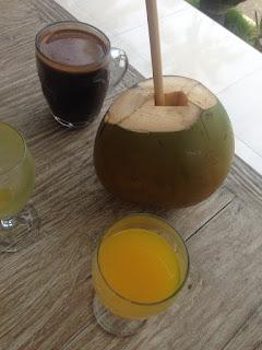 aide leit-lepmets indoneesia inspiratsioon riisipõld riisipõllud kookos