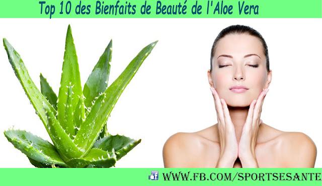 Top 10 des Bienfaits de Beauté de l'Aloe Vera