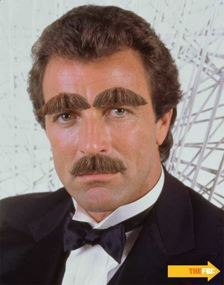 Funny Celebrity Magnum Tom Selleck moustache photo