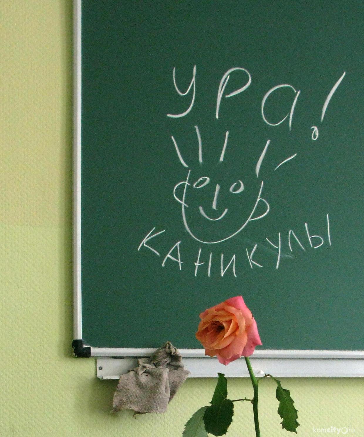 Смешные картинки с окончанием учебного года для учителя