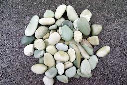 Apa Itu Batu Koral Adalah?