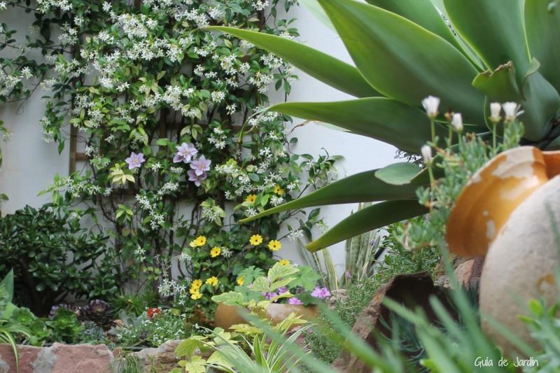 El rincón más fresco del jardín