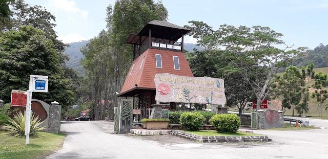 Taman Rimba Teluk Bahang