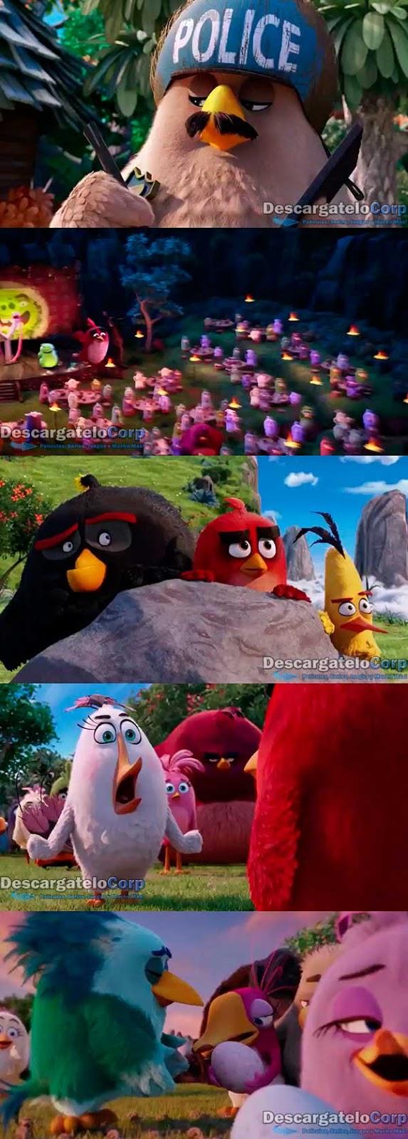 Angry Birds La Pelicula HD 720p