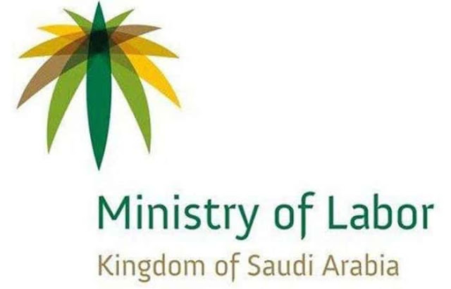 NO PLANS TO REVISE EXPAT LEVY OF COMPANIES