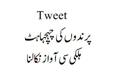 Tweet Meaning in Urdu? - Urdu Helpline