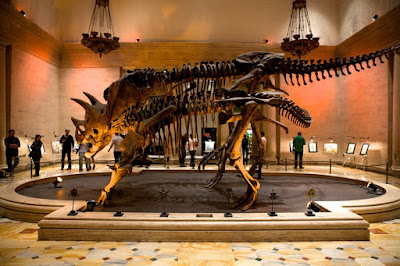 Bảo tang lịch sử tự nhiên Los Angeles
