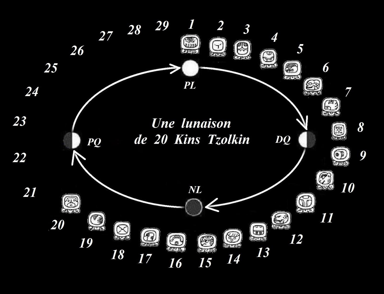 Calendrier Maya Signe.Treize Et Signes De L Univers Calendrier Maya Un Cycle De