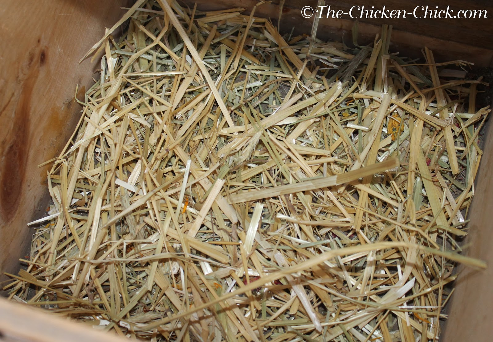 Add a layer of straw to the bottom of the nest box and  place the nest box liner on top of the straw.