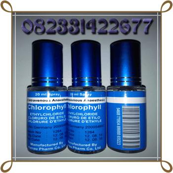 jual obat bius asli cod semarang chlorophyll sprayjual obat bius