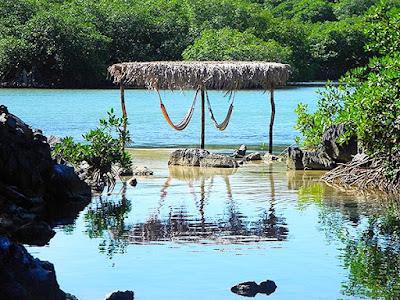 paya bay resort, magic of paya, chillout stations, beauty, nature, naturism,