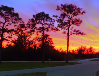 wickham park melbourne florida sunset