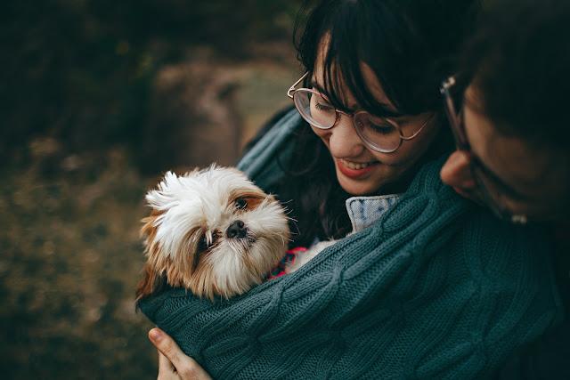 Señales que indican que tienes una relación tóxica dependiente con tu perro