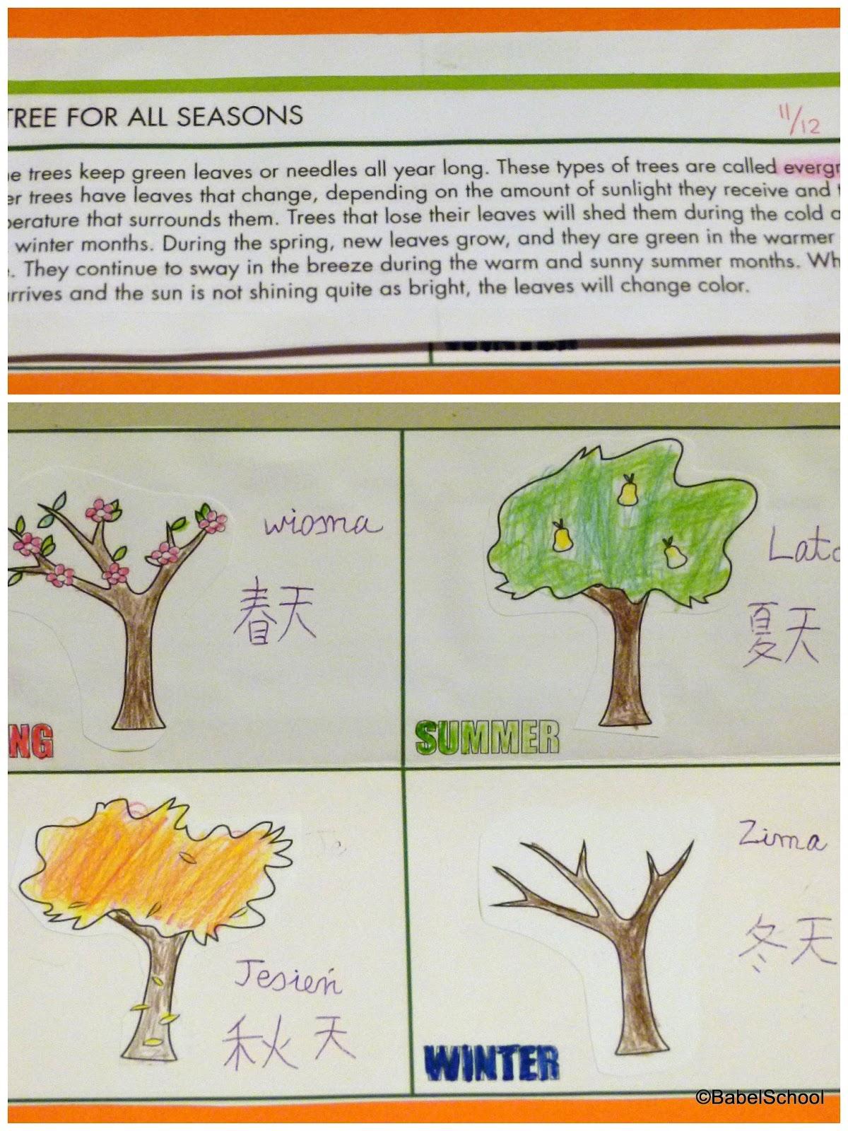 Lapbook Trees