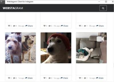 Cara melihat profil instagram orang lain tanpa login ke akun instagram-gambar 2