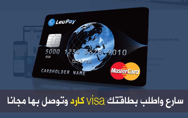 visa,master card