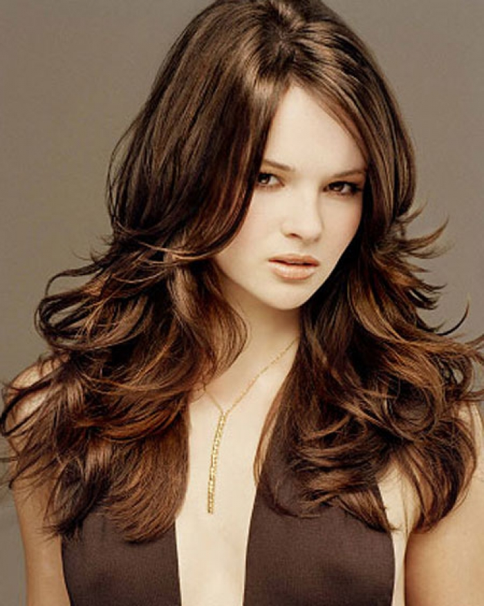 Dark Brown Hair Highlight Ideas Hair Color Highlighting And
