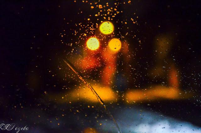 Светулки-в-нощта-Fireflies-at-night