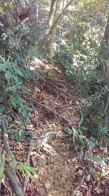 Jungle Trekking Pulau Perhentian