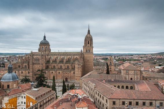 Salamanca. Vista de la Catedral desde la Torre de la Clerecia