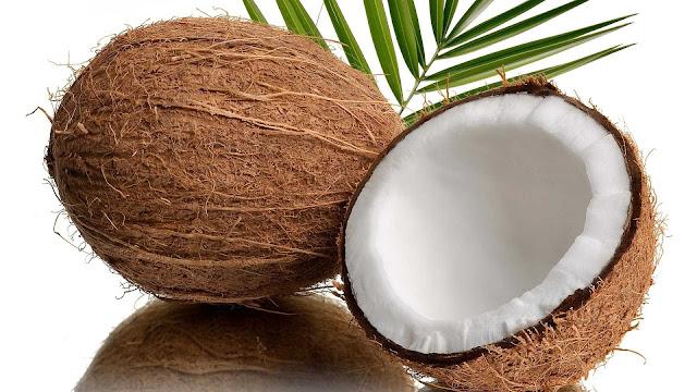 foto buah kelapa segar