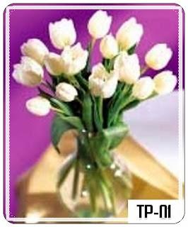 Tulip Untuk Hari Ibu