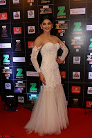 Bollywood Celebrities on the Red Carpet Of Zee Cine Awards 2017 Exclusive 029.JPG