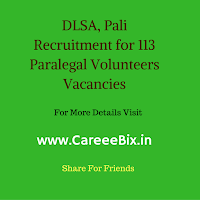 DLSA, Pali Recruitment for 113 Paralegal Volunteers Vacancies