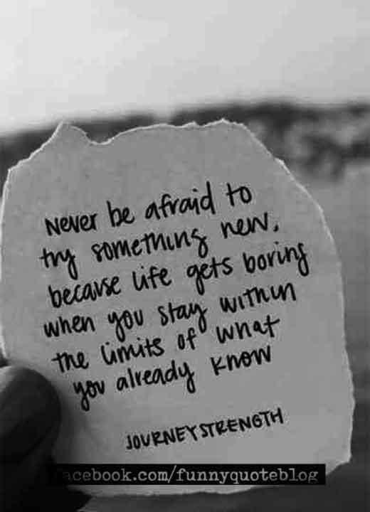 Cute Life Quotes Short