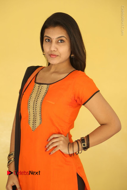 Telugu Actress Chandana Stills in Salwar Kameez at Karam Dosa Movie Press Meet  0001.JPG