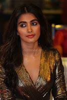 Pooja Hegde looks glamarous in deep neck sleevless short tight golden gown at Duvvada Jagannadham thank you meet function 170.JPG