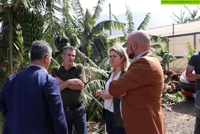 Vanoostende valora el compromiso de las entidades bancarias con los agricultores damnificados por el temporal