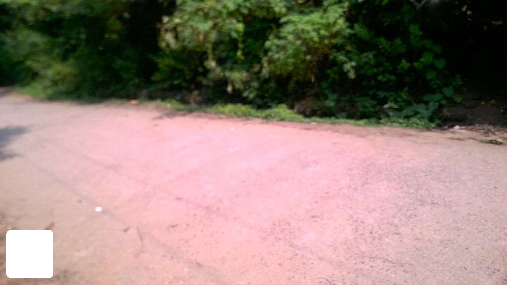 REAL ESTATE : Ambalavayal 1 acre plot for sale Ph: 919562720812