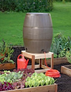 Rain barrels by Sandy Hollingsworth