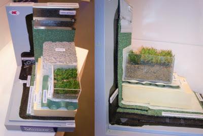 otras secciones de cubiertas vegetales