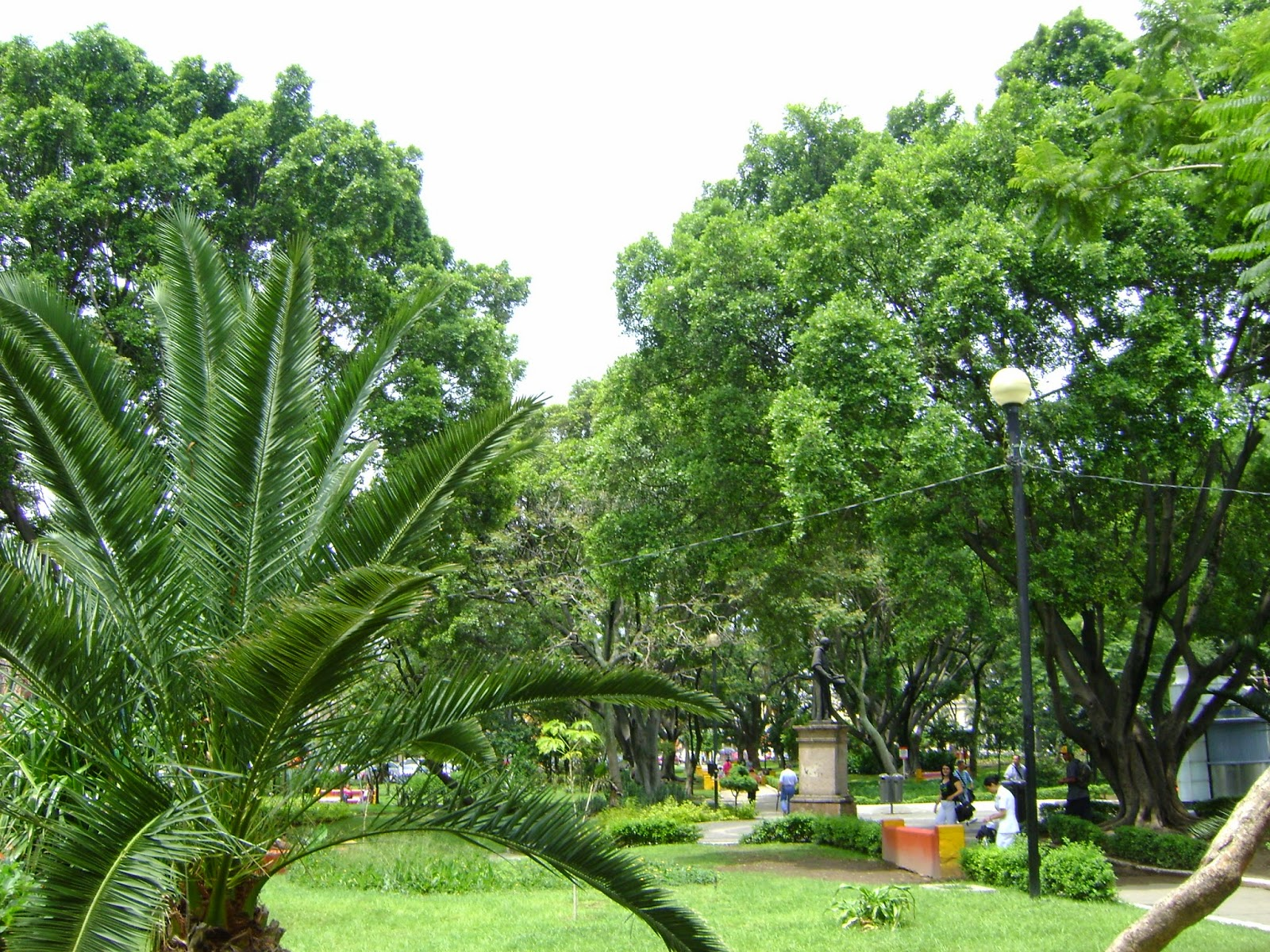 Sancarlosfortin jardin botanico jardin plaza alcalde en for Como ir al jardin botanico