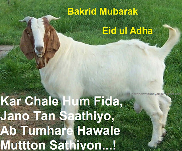 Bakra Eid Mubarak Quotes Shayari Sms Wishes Messages