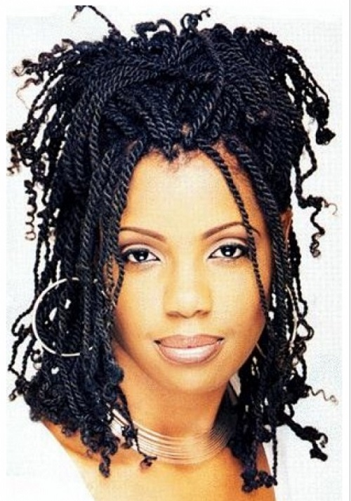 African American Hairstyles Trends And Ideas : Braids