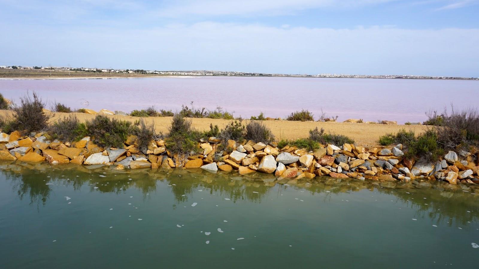 Las Salinas, różowe jezioro Hiszpania, południowa Hiszpania, Torrevieja