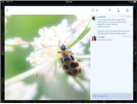 Best Ipad Apps for Instagram